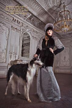 A model with a borzoi. Russian fashion photograph. #animals #dogs #borzoi