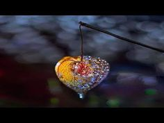 Petr Chobot - Jak se zbavit jakéhokoliv nežádoucího vlivu - YouTube Louise Hay, Petra, Feng Shui, Bird Feeders, Outdoor Decor, Youtube, Youtubers, Youtube Movies, Teacup Bird Feeders