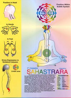 Crown Chakra 7th Chakra ... May also be in western terminology as ethnic fluidium