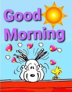Good Morning Team, Good Morning Sunshine Quotes, Good Morning Cartoon, Good Morning Snoopy, Good Morning Funny Pictures, Funny Good Morning Quotes, Good Morning Picture, Good Morning Greetings, Funny Quotes