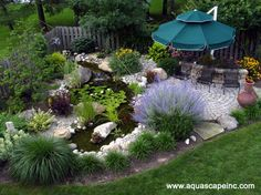 Beautiful use of cool colors and a serene water garden create a refreshing scene.