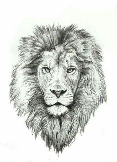 Best Lion Tattoo Collection - best tattoo - best tattoo for women - be Lion Head Tattoos, Mens Lion Tattoo, Leo Tattoos, Future Tattoos, Animal Tattoos, Body Art Tattoos, Lion Thigh Tattoo, Lion Tattoo On Back, Tattos