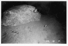 Boulders on the continental rise