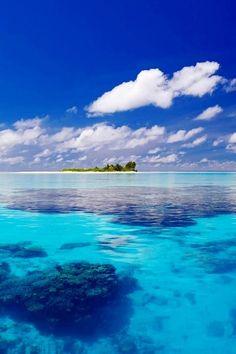 Go scuba diving here