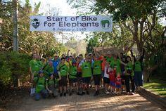Bike for Elephants