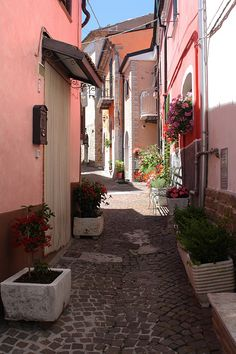 Molise Frosolone IS #TuscanyAgriturismoGiratola