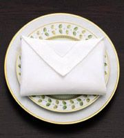 How to - Envelope Napkin Fold - Love This!