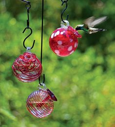 Droplet Hummingbird Feeders, Set of 3 - Glass Hummingbird Feeders from Gardener's Supply in Vermont.