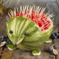 watermelon porcupine with cute blueberry eyes and nose.