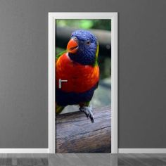 Fototapeta na drzwi Wally Parrot, Photograph, Doors, Bird, Decoration, Wallpaper, Animals, Inspiration, Home Decor