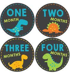 Dinosaur Baby Month Stickers #onesiestickers #monthlybabystickers #babybellystickers