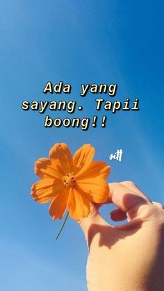 Qoutes, Me Quotes, Cinta Quotes, Thoughts And Feelings, Aesthetic Pictures, Captions, Tumbler, Haha, Mood