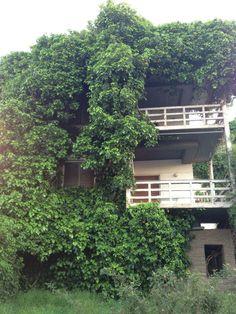 Ερημο κτήριο που καταπίνει η φύση.