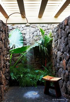 outdoor shower. like the plants right there as if surrounded by a waterfall in a…