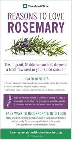 Reasons to Love Rosemary (Infographic)