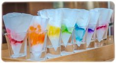 Markers ☕Coffee Filters Rainbow Walking Water ⌛️Timelapse Kids ⚗️Science Capillary Action, Kids Science, Walking water, capillary action, coffee filters DIY, Kids Science experiment, DIY, Homeschool, Montessori From The Heart, Timelapse experiment, Timelapse, Rainbow Coffee filter, Rainbow Marker Coffee Filters, Rainbow Marker
