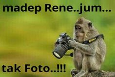 Doesn't mean you are a photographer. Funny Quotes, Funny Memes, Hilarious, Camera Hacks, Camera Tips, Funny Pranks, Funny Signs, Funny People, Funny Posts