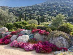 Saleccia, un nom qui porte les parfums de la Corse! Installé près de l'Ile Rousse, c'est le...