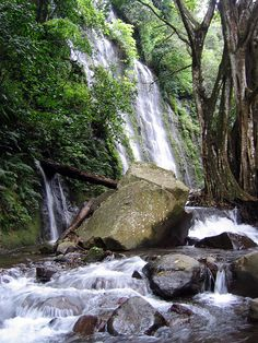 El Salvador - Ruta de las Flores - 7 waterfalls trail in Juayua / suchitoto.tours@gmail.com