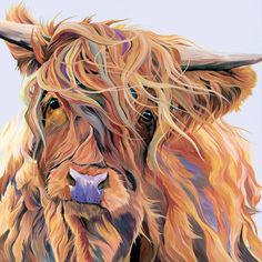 Highland Cow Painting, Highland Cow Art, Highland Cattle, Highland Cow Tattoo, Highland Cow Pictures, Cow Drawing, Scottish Highland Cow, Colorful Animals, Colorful Animal Paintings