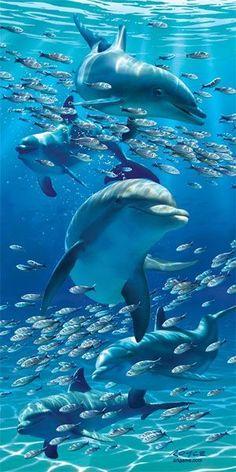 Dauphins et poissons