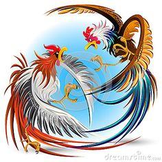 Gallos de lucha de la pelea de gallos