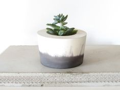 black and white concrete planter by badseedshop on Etsy