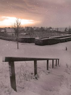 Snow - Culemborg, Netherlands