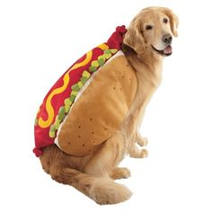 "Happy National Hot Dog Day!Hope your ""hot dog"" feels special today how ever you celebrate ;)"