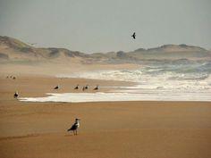 Punta del Diablo, Rocha Uruguay |Portal : Galería de Fotos