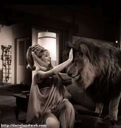 I Dream of Jeannie (Barbara Eden) Jeannie petting a lion