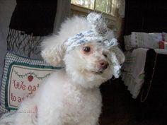 BETTY BOUFFANT'S Beauty Parlour by lisa bodiker on Etsy