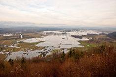 Poplavljeno ljubljansko barje