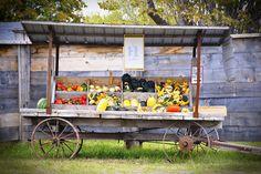Best Farm Stand Display Ideas For Alternative Beautiful Display Ideas – GooDSGN Produce Displays, Produce Stand, The Farm, Farmers Market Display, Market Displays, Vegetable Stand, Flower Cart, Flower Truck, Farm Projects