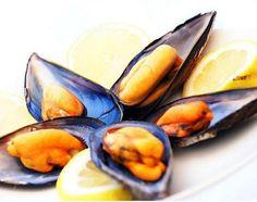 Como preparar mexilhão. Os mexilhões são um dos mariscos mais ricos e nutritivos que podemos consumir, pois são um verdadeiro luxo para o paladar. Além disso, são uma excelente fonte de proteínas e oferecem um baixo conteúdo...