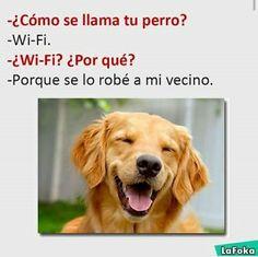 #wattpad #humor ¡Hola! ¿Quieres reírte un rato con las imágenes y/o memes de la Foka? ¡Estás en el lugar correcto! ¡Bienvenido/a! Las imágenes NO me pertenecen.