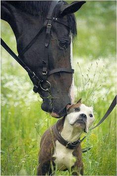 ¡¡Hablando del amor generoso!!
