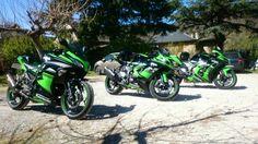 Kawasaki Ninja Family