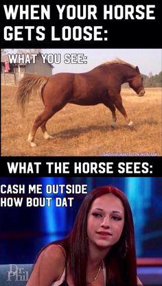0bb2d931900151e98e9c9667289be2fa stupid stuff stupid funny cash me ousside how bou dah it's catch me outside not cash me
