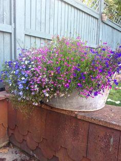 Rustic garden tub