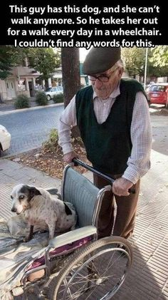 Janice @airportdiva   This guy has a dog, and she can't walk anymore