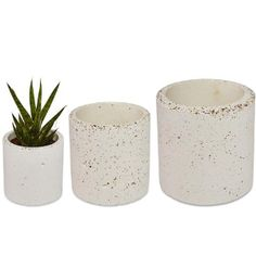 Large Concrete Plant Pot: Studio Noah Various Sizes Concrete Plant Pots. Speckled concrete planter, cast by hand. No two pours are exactly the same making each planter as unique as a finger print. The small sized planter has a smaller aggregate to create smaller speckles than those on the medium and larger sized planter. Made using a handmade mould, creating a unique shaped planter. Hand cast using quality Portland white cement, volcanic ash and an aggregate for both strength and aesthetics…