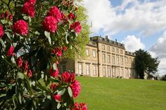 This is the front of Cannon Hall museum with the rhododendrons in full bloom :-) My Happy Place, Cannon, Yorkshire, Landscapes, Bloom, Museum, Mansions, House Styles, Places