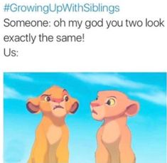 Rakshabandhan, happy rakhi, brother sister jokes, growing up with siblings, siblings memes Really Funny Memes, Stupid Funny Memes, Funny Tweets, Funny Relatable Memes, Funny Stuff, Funny Sarcasm, Funny Comebacks, Mom Funny, Funny Puns