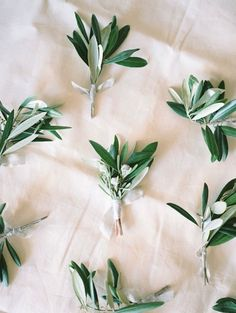 Olive branches can be one of the most inexpensive greenery to add and it looks fresh.