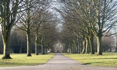 Has the axe fallen on Manchester's green spaces? Article in @guardian 6 Feb 2013