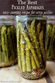 Best Pickled Asparagus Easy Canning is part of Best Pickled Asparagus Recipe Easy Canning Instructions - This pickled asparagus recipe is delicious and is also a safe canning recipe Be warned, we've been known to eat an entire jar in one sitting! Best Pickled Asparagus Recipe, Easy Asparagus Recipes, Vegetable Recipes, Best Pickling Brine Recipe, Refrigerator Pickled Asparagus Recipe, Pickled Veggies Recipe, Vegetable Appetizers, Pickled Garlic, Easy Canning
