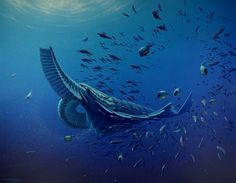 artists reconstruction of cambrian creature