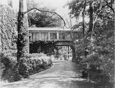 Glass Bridge. Louis Comfort Tiffany Estate / Laurelton Hall (Old Long Island)