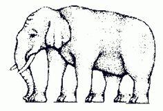 Se formos comparar o complexo sistema de percepção visual dos seres humanos com produtos de informática, podemos dizer que as ilusões de